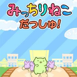 猫版樱桃小丸子隆重登场《萌猫向前冲》