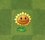 植物大战僵尸2向日葵图鉴