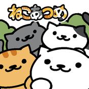 猫咪后院Kitty Collector